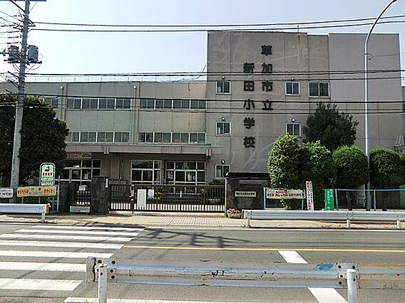 新田小学校11...