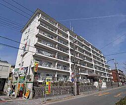 京都府京都市北区紫野西蓮台野町の賃貸マンションの外観