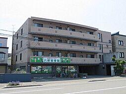 サイレンス八軒アネックス[4階]の外観
