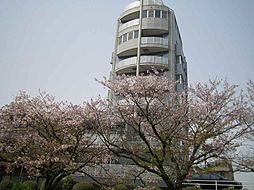 広島電鉄9系統 白島駅 白島九軒町下車 徒歩8分の賃貸マンション