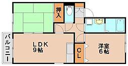 アムール坂井[2階]の間取り