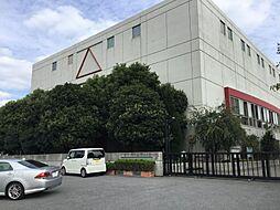 埼玉県川口市長蔵3丁目の賃貸マンションの外観