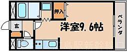 広島県広島市東区戸坂大上1丁目の賃貸マンションの間取り