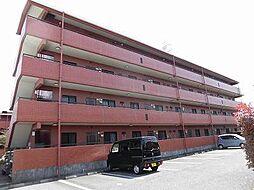コーナス・ガーデンA棟[1階]の外観