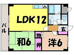 愛媛県松山市湊町6丁目の賃貸マンションの間取り