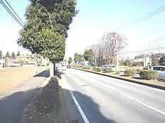 東側の前面道路は国道です。
