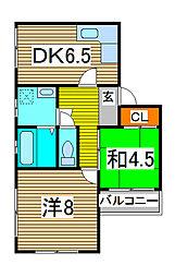 ティーハイム寺島[3階]の間取り