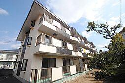 埼玉県越谷市越ケ谷の賃貸マンションの外観