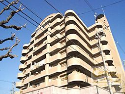 カワデンセントリックハイツ[2階]の外観
