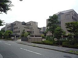 木村様ハイツ[2階]の外観