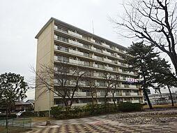 上浜団地[4階]の外観