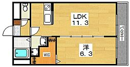 アムール兒島[2階]の間取り