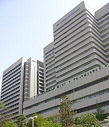 大阪府大阪市阿倍野区美章園2丁目の賃貸アパートの外観