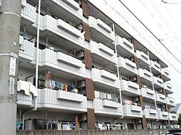 シベール桂泉[3階]の外観
