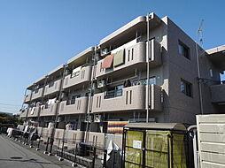 栃木県宇都宮市若草4丁目の賃貸マンションの画像