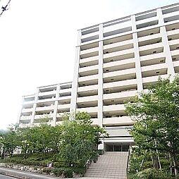 JQ高宮多賀の杜[11階]の外観