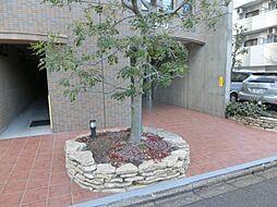 アイビーリーグ大曽根[5階]の外観