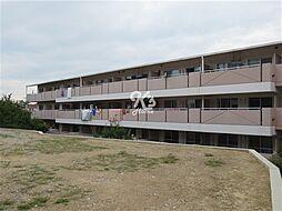 兵庫県神戸市西区伊川谷町潤和1丁目の賃貸マンションの外観