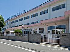 江戸川区立南小岩小学校まで530m