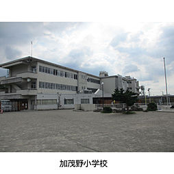 小学校加茂野小学校まで636m