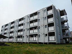 ビレッジハウス勝田4号棟[203号室]の外観