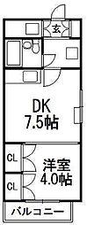 北海道札幌市中央区南九条西6丁目の賃貸マンションの間取り