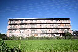大阪府柏原市円明町の賃貸マンションの外観