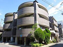 コージーハイツ恵門[1-B号室]の外観