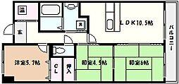 兵庫県神戸市東灘区本庄町3丁目の賃貸マンションの間取り