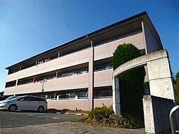 メゾンファミイユ[1階]の外観