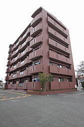 ドーチェスター[4階]の外観