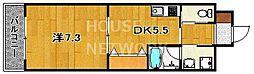 STD五条[505号室号室]の間取り