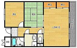 シャンテコウノキ[1階]の間取り