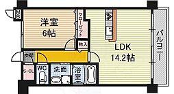 ドーマ泉大津 4階1LDKの間取り