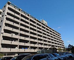 サーパス津高台通り一番館[4階]の外観