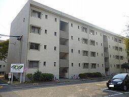 森孝東住宅2号棟[2階]の外観