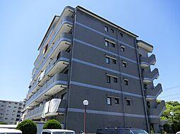 メゾンラフィーヌ奥野[5階]の外観