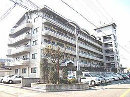 マンションナシマ[502号室]の外観