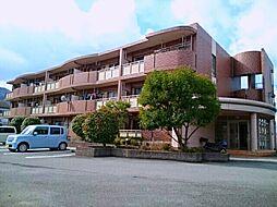 和歌山県海南市大野中の賃貸アパートの外観