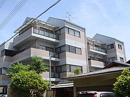 夙川ガーデンハイムII[202号室]の外観