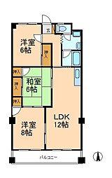 千葉県松戸市新松戸北2丁目の賃貸マンションの間取り