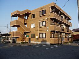栃木県宇都宮市石井町の賃貸マンションの外観