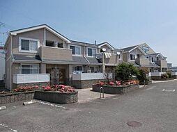 和歌山県和歌山市松島の賃貸マンションの外観