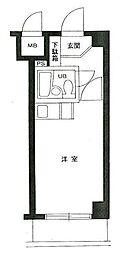東京都葛飾区東新小岩1の賃貸マンションの間取り