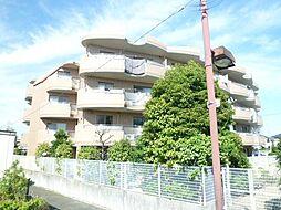 東京都足立区神明南2丁目の賃貸マンションの外観