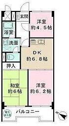 光シャンブル品川東八ッ山公園[9F号室]の間取り