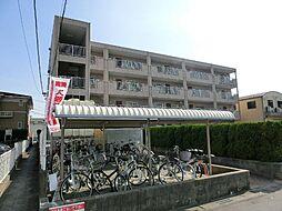 愛知県あま市甚目寺須原の賃貸マンションの外観