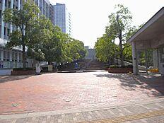 大学東洋大学(白山キャンパス)まで1642m