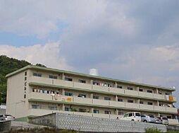 藤井ビル8[2階]の外観