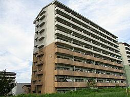 URアーバンラフレ小幡6号棟[5階]の外観
